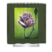 Twilight Rose Shower Curtain