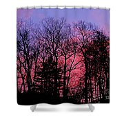 Twilight Trees Shower Curtain