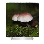 Twin Peaks - Pink And White Mushroom Duo Shower Curtain