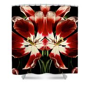 Twin Tulips Shower Curtain