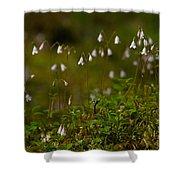 Twinflower Shower Curtain