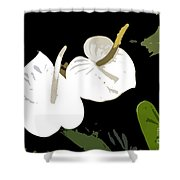 Twins Work Number 10 Shower Curtain