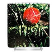 Twisted Evil Clown Portrait Shower Curtain