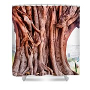 Twisted Gnarled Tree Shower Curtain