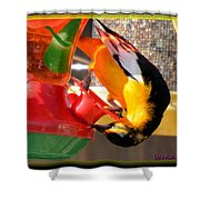 Twisted Oriole Shower Curtain