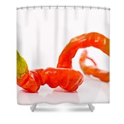 Twisted Pepper Shower Curtain