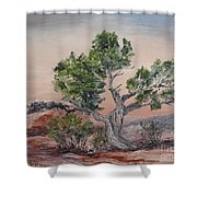 Twisted Temptest Shower Curtain