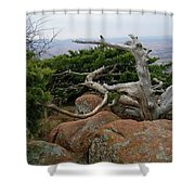 Twisted View Shower Curtain