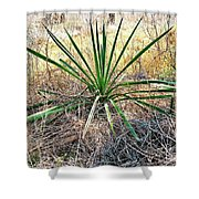 Twisted Yucca Shower Curtain
