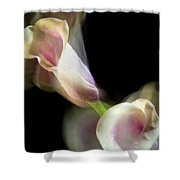 Twisting Cala Lily One Shower Curtain