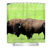 Two Amigos Shower Curtain