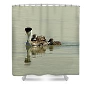 Two Babies An Mother Shower Curtain