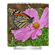 Two Beauties Shower Curtain
