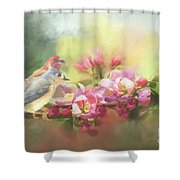 Two Birds Admiring The View Shower Curtain