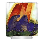 Two Blue Horses In Front Of A Red Roc 1913 Shower Curtain