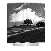 Two Brothers Shower Curtain