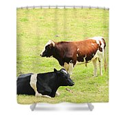 Two Bulls In A Pasture Shower Curtain