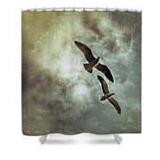 Two By Two They Flew Shower Curtain