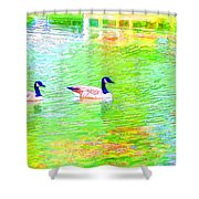 Two Canadian Geese In The Water Shower Curtain