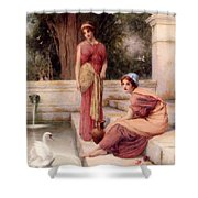 Two Classical Maidens And A Swan Shower Curtain