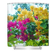 Two Color Flowers Shower Curtain