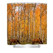 Two Colorado High Country Autumn Horses Shower Curtain