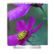 Two Cosmos Shower Curtain