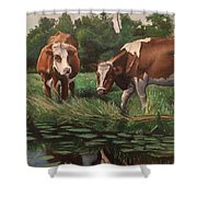 Two Cows By A Pond Shower Curtain
