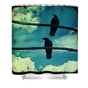 Two Crows Blue Lomo Sky Shower Curtain