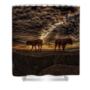 Two Dog Sunset Shower Curtain