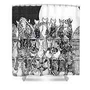 Two Dozen And One Cats Shower Curtain