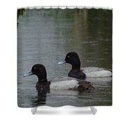 Two Ducks In The Rain Shower Curtain