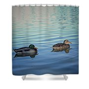 Two Ducks Strolling No Edit Shower Curtain