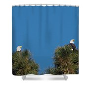 Two Eagles In Two Tree Tops Shower Curtain