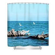 Two Egrets Shower Curtain