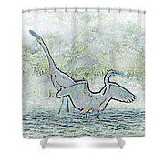 Two Egrets In Water I Glow Brilliant On White II Shower Curtain