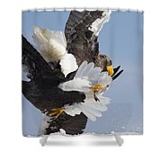 Two For One Shower Curtain