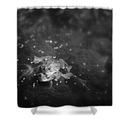 Two Frogs In A Pond Mating By Laying Shower Curtain by Roberta Murray