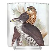 Two Goshawks Shower Curtain
