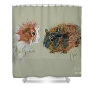 Two Guineas Shower Curtain