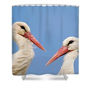 Two Heads Shower Curtain