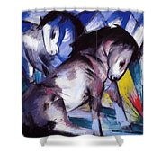 Two Horses 1913 Shower Curtain