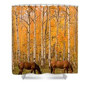 Two Horses Grazing In The Autumn Air Shower Curtain