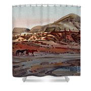 Two Horses In The Arroyo Shower Curtain