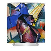 Two Horses Red And Blue 1912 Shower Curtain