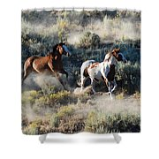 Two Horses Running Shower Curtain