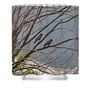 Two If By Tree Shower Curtain