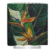 Two Is Company  Shower Curtain
