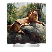 Two Lions - Forever And Always Together Shower Curtain