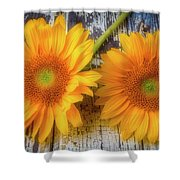 Two Lovely Sunflowers Shower Curtain